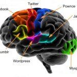Redes Sociales del Cerebro