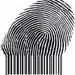 Actualiza tu Política de Privacidad a la cookie DART